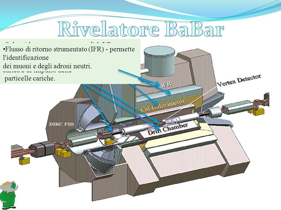 Rivelatore di Vertice in Silicio (SVT) - permette di determinare la posizione delle tracce delle particelle cariche. Camera a deriva (DCH) - è il rive