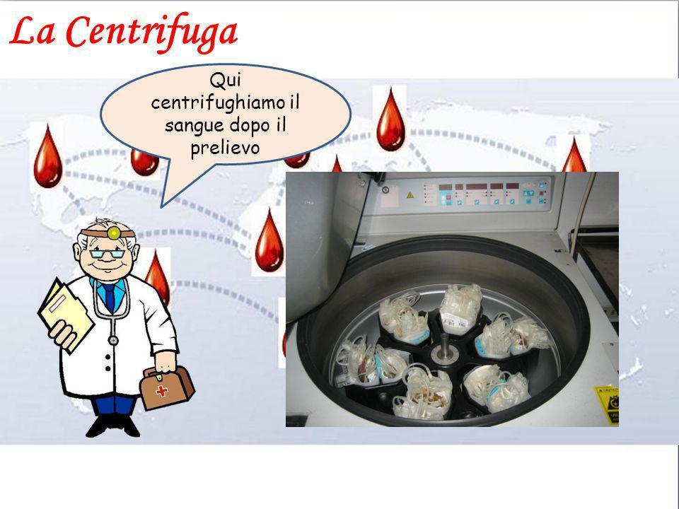 La Centrifuga Qui centrifughiamo il sangue dopo il prelievo