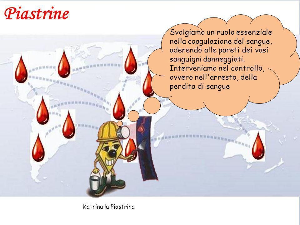 Piastrine Svolgiamo un ruolo essenziale nella coagulazione del sangue, aderendo alle pareti dei vasi sanguigni danneggiati. Interveniamo nel controllo