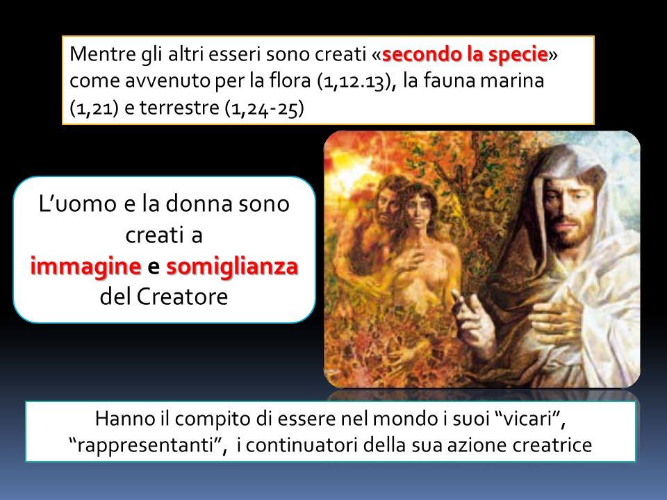 Francesco udì la voce gli disse: «Francesco, va, ripara la mia casa, che, come vedi, va tutta in rovina».