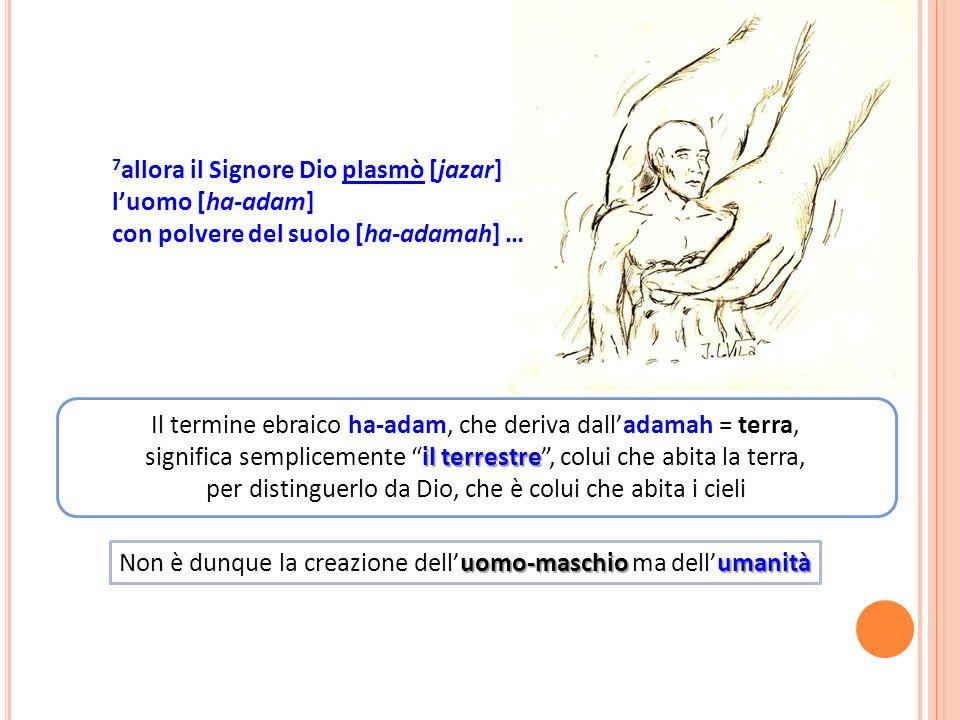 Il termine ebraico ha-adam, che deriva dalladamah = terra, il terrestre significa semplicemente il terrestre, colui che abita la terra, per distinguerlo da Dio, che è colui che abita i cieli uomo-maschioumanità Non è dunque la creazione delluomo-maschio ma dellumanità 7 allora il Signore Dio plasmò [jazar] luomo [ha-adam] con polvere del suolo [ha-adamah] …