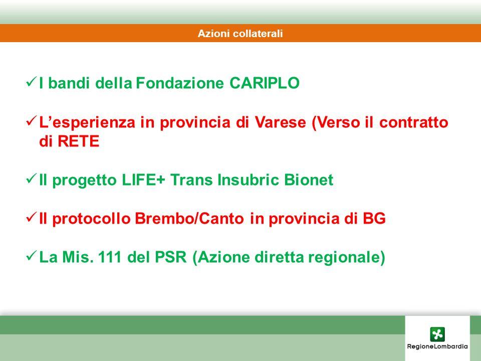 I bandi della Fondazione CARIPLO Lesperienza in provincia di Varese (Verso il contratto di RETE Il progetto LIFE+ Trans Insubric Bionet Il protocollo