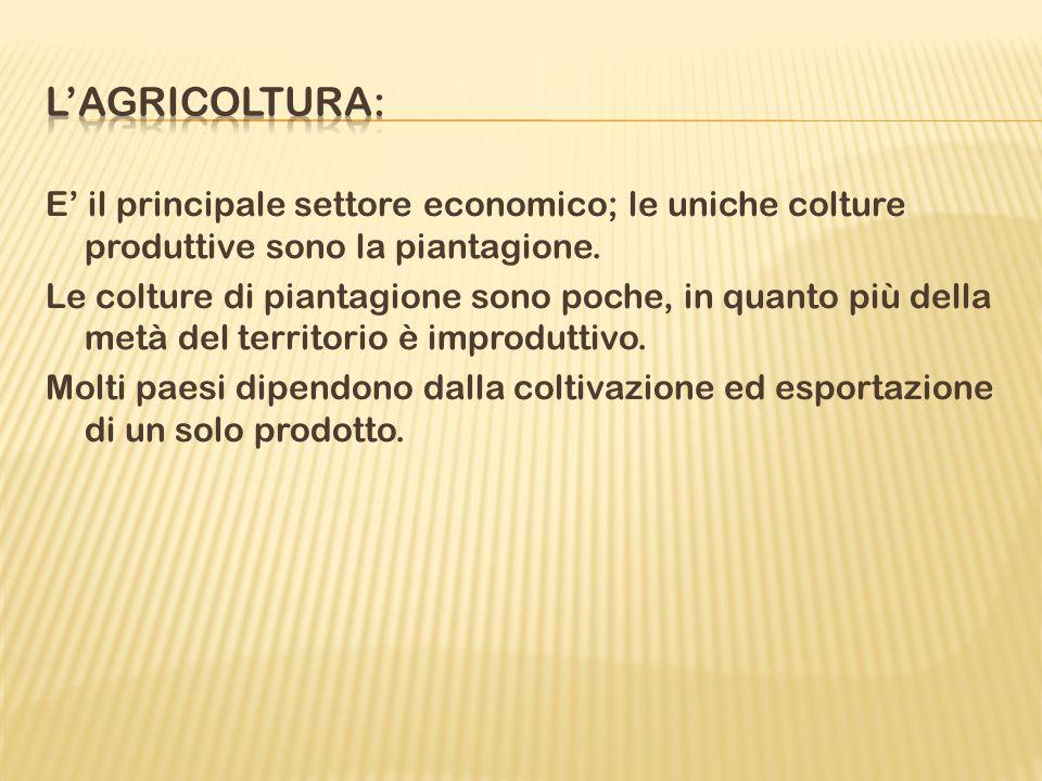 E il principale settore economico; le uniche colture produttive sono la piantagione.