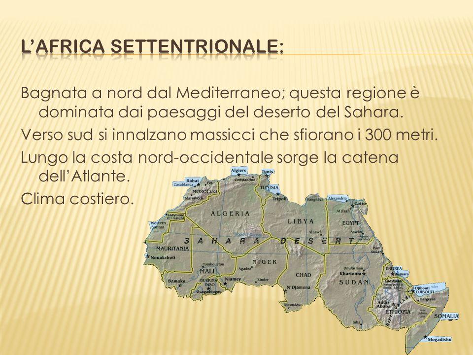 Bagnata a nord dal Mediterraneo; questa regione è dominata dai paesaggi del deserto del Sahara. Verso sud si innalzano massicci che sfiorano i 300 met