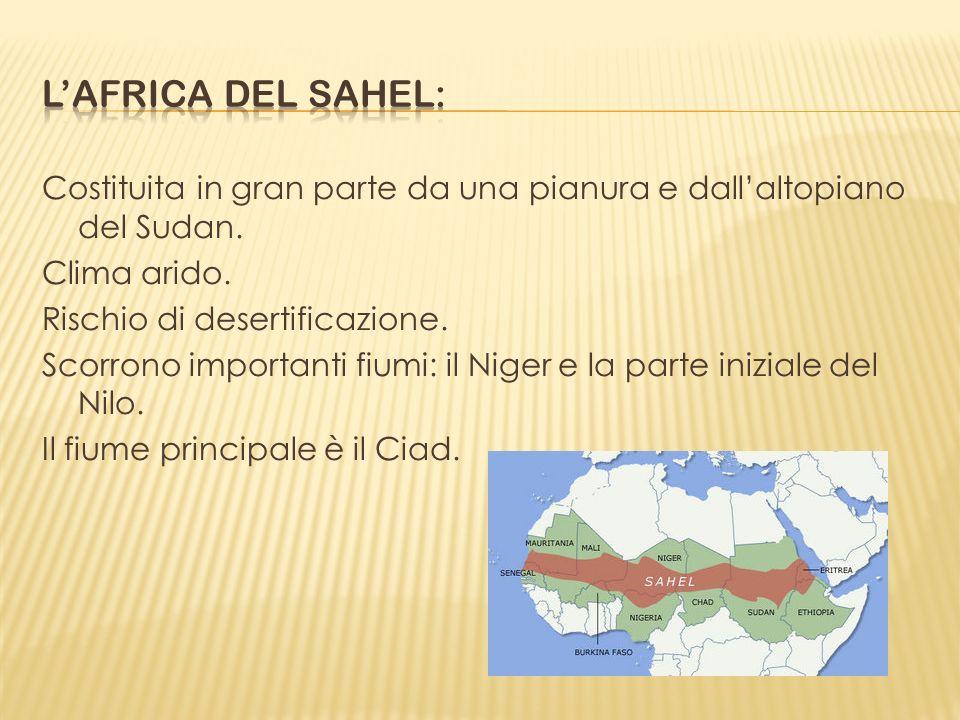 Costituita in gran parte da una pianura e dallaltopiano del Sudan. Clima arido. Rischio di desertificazione. Scorrono importanti fiumi: il Niger e la