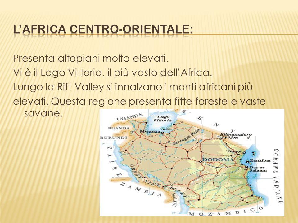 Presenta altopiani molto elevati. Vi è il Lago Vittoria, il più vasto dellAfrica. Lungo la Rift Valley si innalzano i monti africani più elevati. Ques