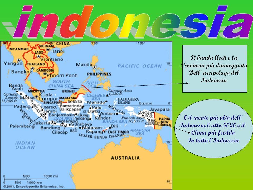 E il monte più alto dell' Indonesia E alto 5020 e il Clima più freddo In tutta lIndonesia Il banda Aceh e la Provincia più danneggiata Dell' arcipelag