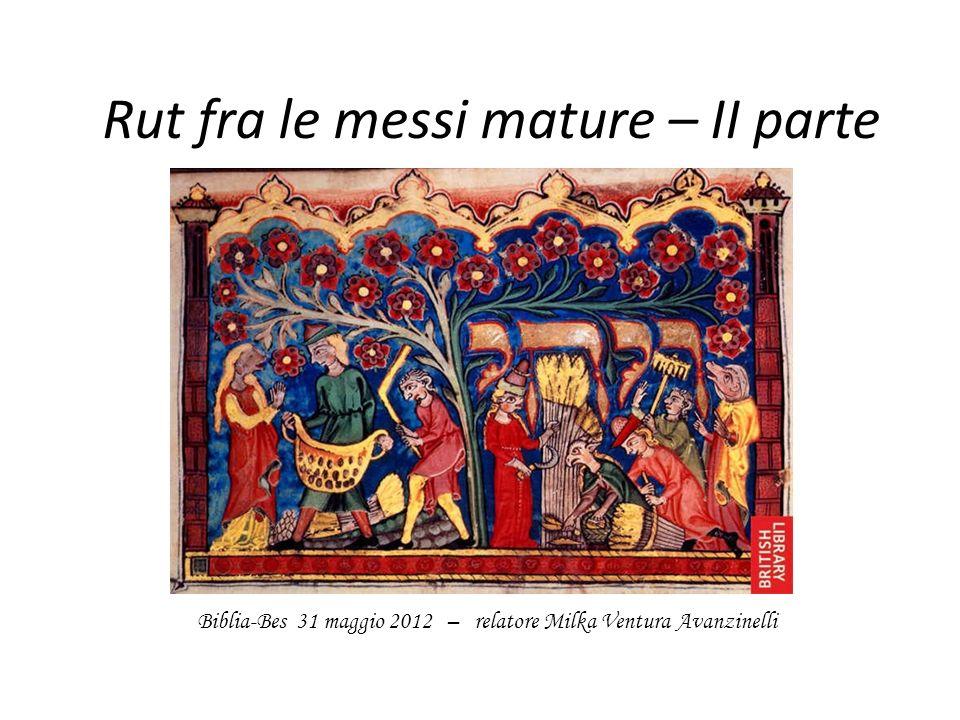 Rut fra le messi mature – II parte Biblia-Bes 31 maggio 2012 – relatore Milka Ventura Avanzinelli