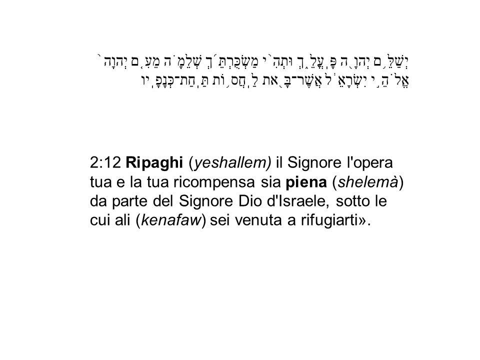 2:12 Ripaghi (yeshallem) il Signore l'opera tua e la tua ricompensa sia piena (shelemà) da parte del Signore Dio d'Israele, sotto le cui ali (kenafaw)