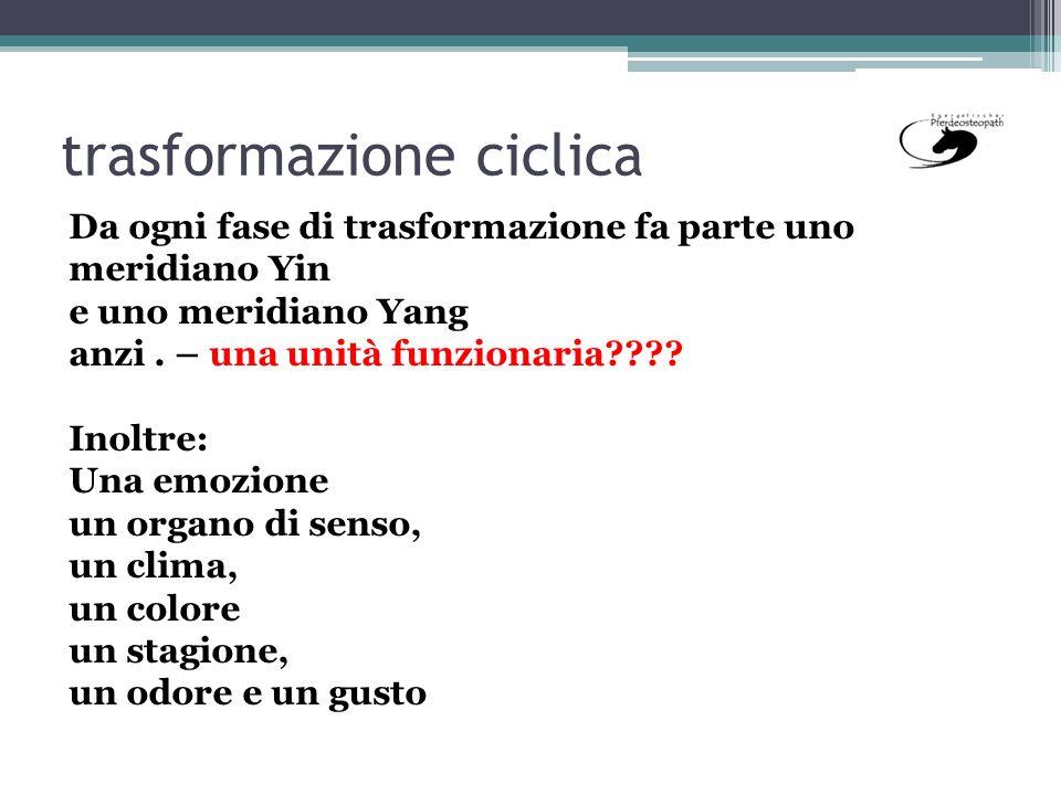trasformazione ciclica 3 Da ogni fase di trasformazione fa parte uno meridiano Yin e uno meridiano Yang anzi. – una unità funzionaria???? Inoltre: Una
