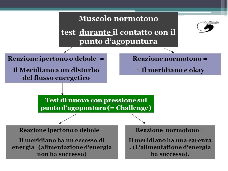 Muscolo normotono test durante il contatto con il punto dagopuntura Test di nuovo con pressione sul punto dagopuntura (= Challenge) Reazione ipertono