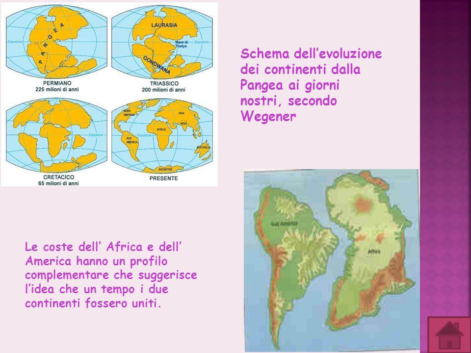Schema dellevoluzione dei continenti dalla Pangea ai giorni nostri, secondo Wegener Le coste dell Africa e dell America hanno un profilo complementare