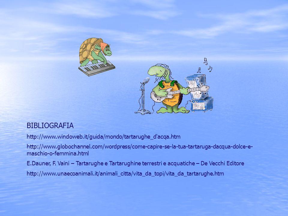 BIBLIOGRAFIA http://www.windoweb.it/guida/mondo/tartarughe_d'acqa.htm http://www.globochannel.com/wordpress/come-capire-se-la-tua-tartaruga-dacqua-dol