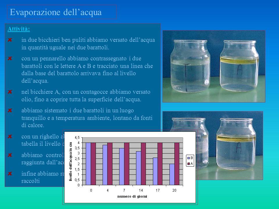 Evaporazione dellacqua Scopo dellesperienza: Dimostrare che lacqua a temperatura ambiente evapora naturalmente Levaporazione non avviene se lacqua non