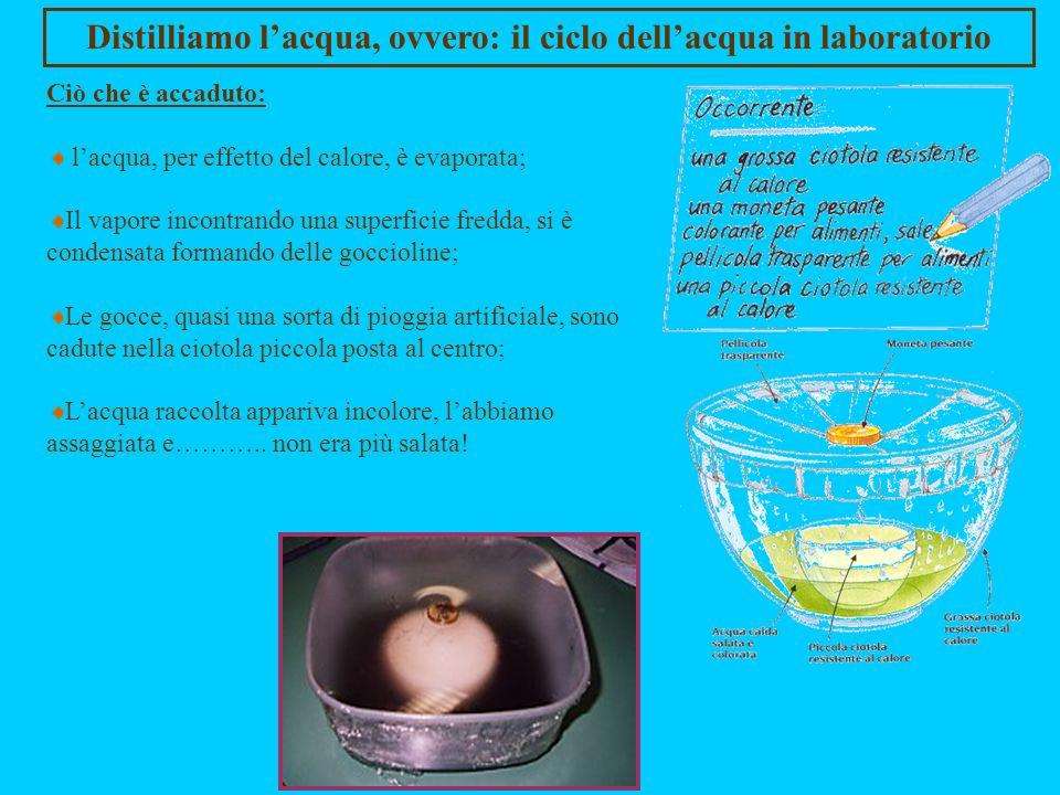 Distilliamo lacqua, ovvero: il ciclo dellacqua in laboratorio Scopo dellesperienza: a partire dallacqua salata possiamo ottenere acqua pura (H 2 O), s