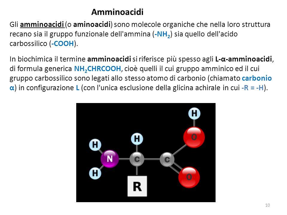 Amminoacidi Gli amminoacidi (o aminoacidi) sono molecole organiche che nella loro struttura recano sia il gruppo funzionale dell'ammina (-NH 2 ) sia q