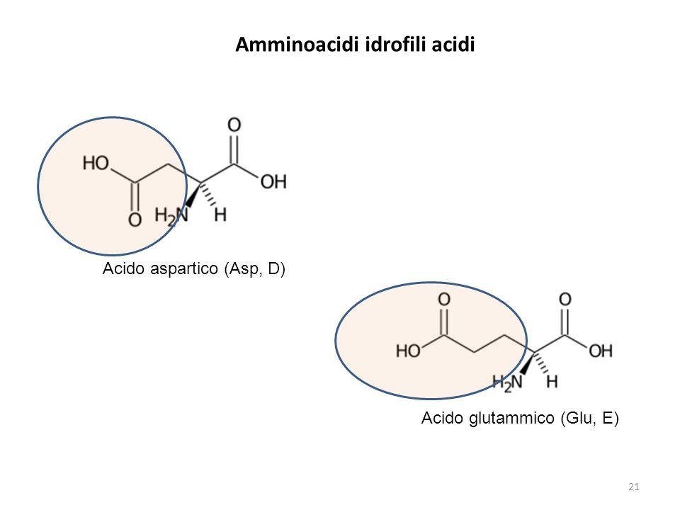 Amminoacidi idrofili acidi Acido aspartico (Asp, D) Acido glutammico (Glu, E) 21