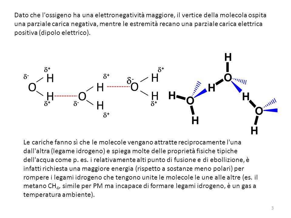 Dato che l'ossigeno ha una elettronegatività maggiore, il vertice della molecola ospita una parziale carica negativa, mentre le estremità recano una p