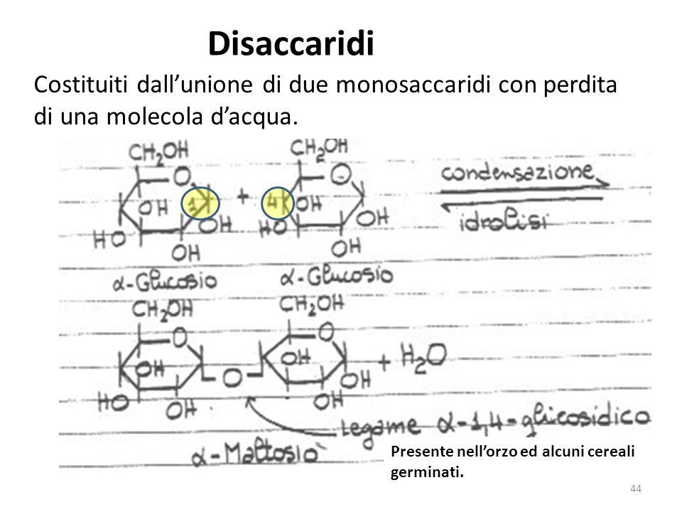 Disaccaridi Costituiti dallunione di due monosaccaridi con perdita di una molecola dacqua. Presente nellorzo ed alcuni cereali germinati. 44