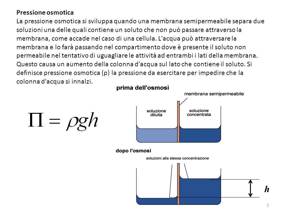 Pressione osmotica La pressione osmotica si sviluppa quando una membrana semipermeabile separa due soluzioni una delle quali contiene un soluto che no