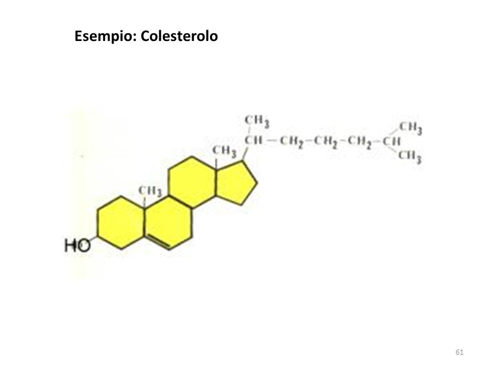 61 Esempio: Colesterolo