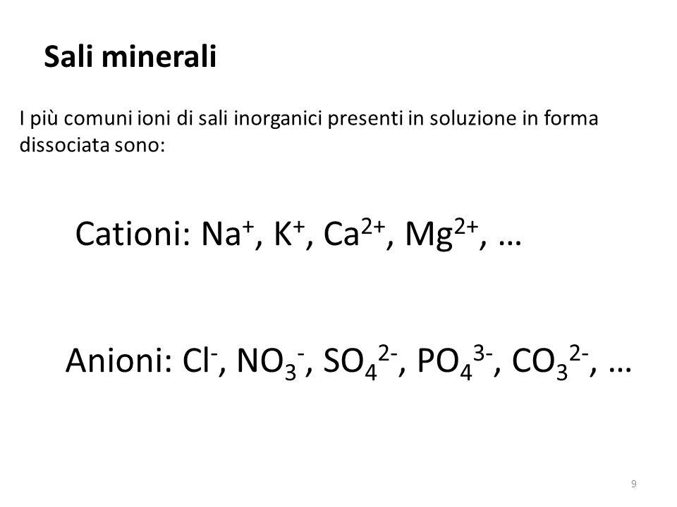 Sali minerali I più comuni ioni di sali inorganici presenti in soluzione in forma dissociata sono: Cationi: Na +, K +, Ca 2+, Mg 2+, … Anioni: Cl -, N