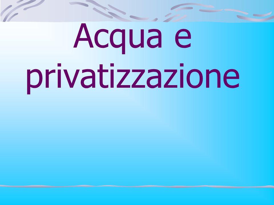 Acqua e privatizzazione