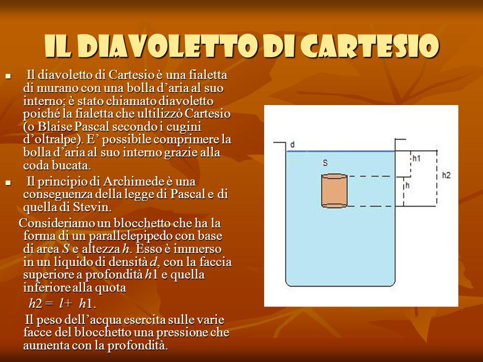 Montaggio dellesperienza Abbiamo trovato il diavoletto già immerso nellacqua, e la beuta era già stata provvista del tappo-membrana elastica necessario per lo svolgimento dellesperienza.