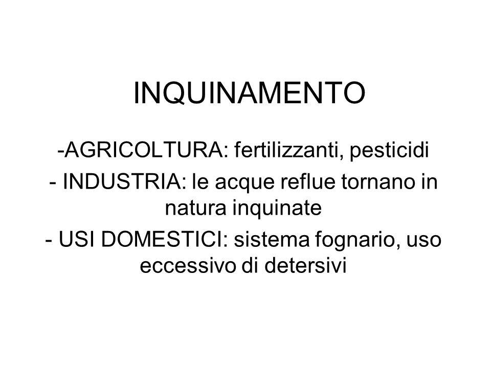 INQUINAMENTO -AGRICOLTURA: fertilizzanti, pesticidi - INDUSTRIA: le acque reflue tornano in natura inquinate - USI DOMESTICI: sistema fognario, uso ec