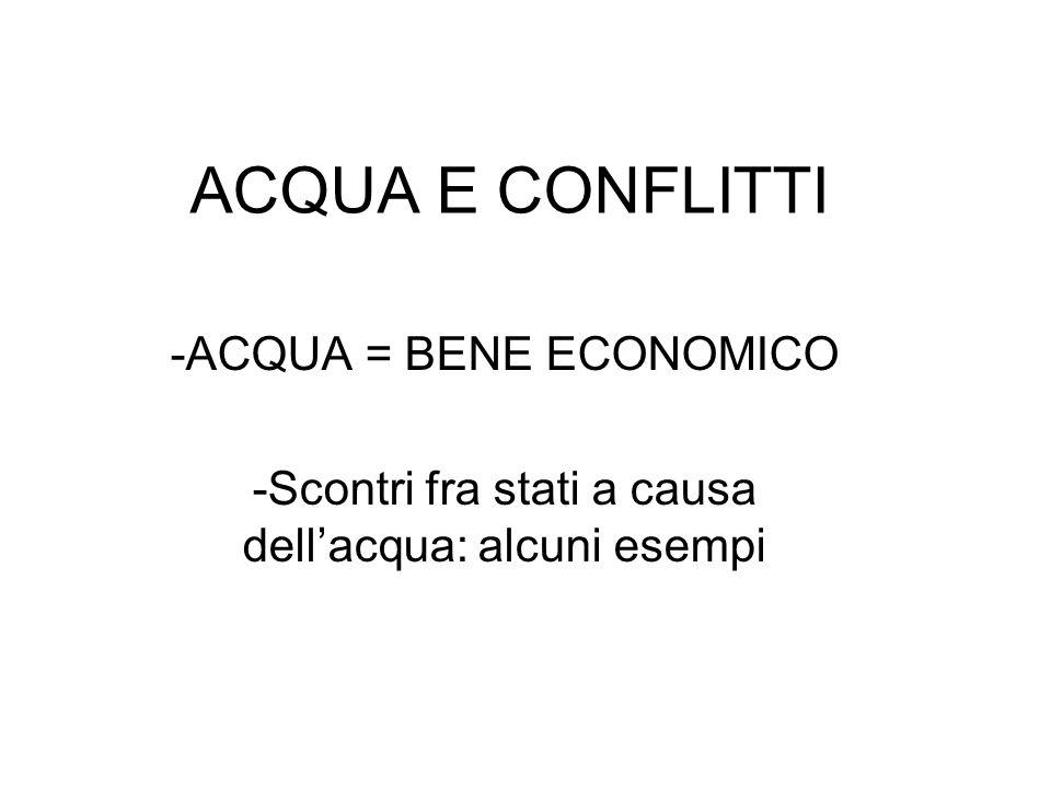 ACQUA E CONFLITTI -ACQUA = BENE ECONOMICO -Scontri fra stati a causa dellacqua: alcuni esempi