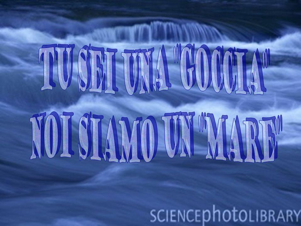 Ogni italiano consuma 2.332 metri cubi di acqua allanno: quasi il contenuto di una piscina olimpionica… L Italia è al 4° posto per il consumo di acqua nel mondo: due volte la media mondiale.