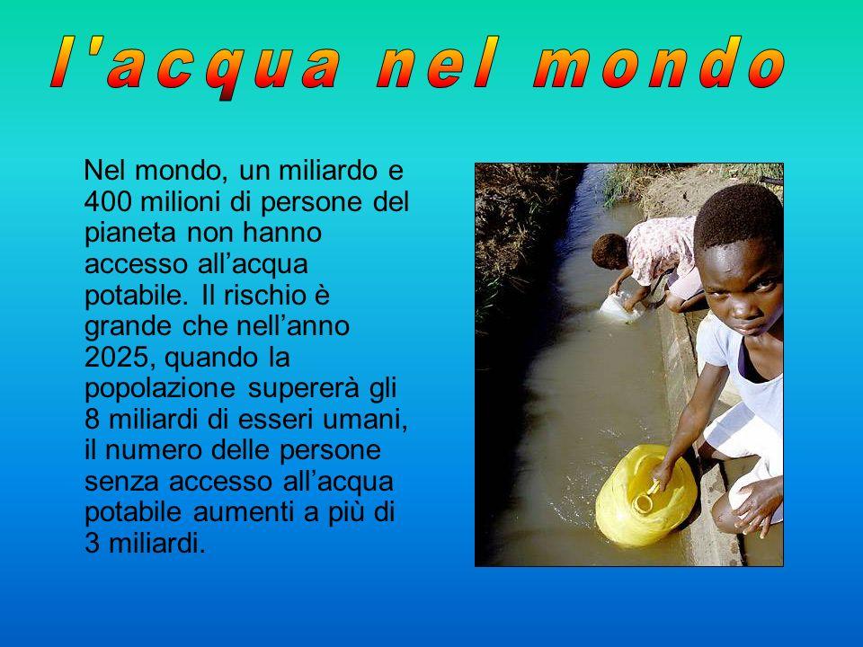 Nel mondo, un miliardo e 400 milioni di persone del pianeta non hanno accesso allacqua potabile. Il rischio è grande che nellanno 2025, quando la popo