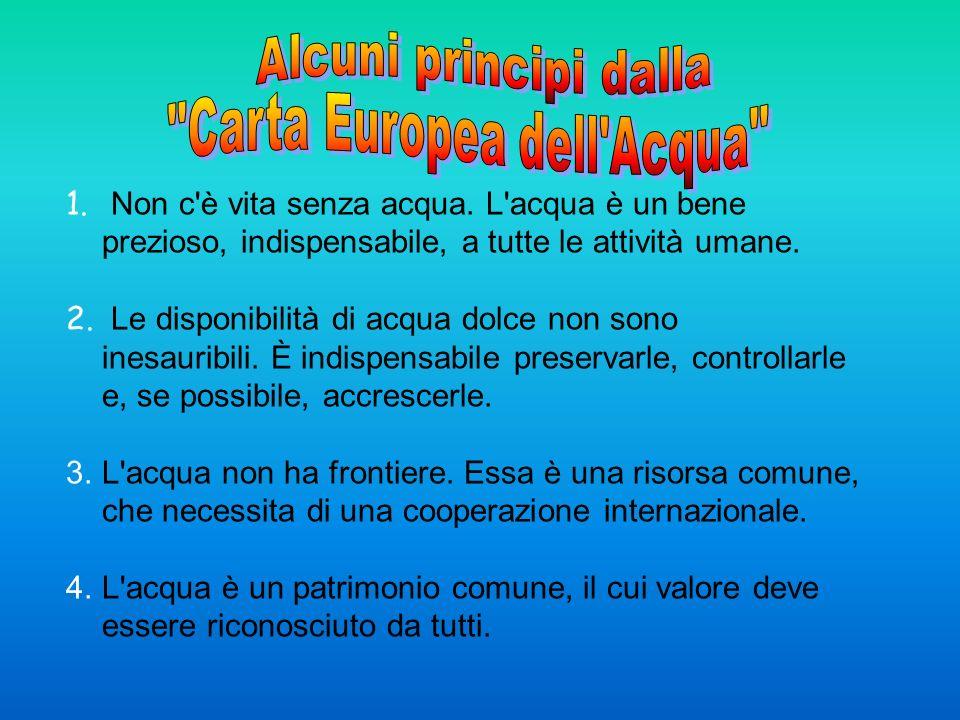 Crediti Presentazione preparata da Youssef Hafid & Christopher Roverelli – Itis Pascal – Cesena – Italia (2008-2009) Ringraziamenti alle insegnanti: A.M.