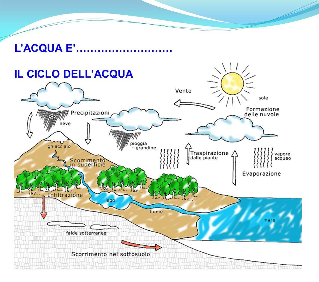 Eccezionale Il Ciclo Dell'acqua - Lessons - Tes Teach QO99