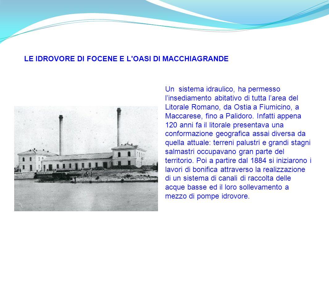 Un sistema idraulico, ha permesso linsediamento abitativo di tutta larea del Litorale Romano, da Ostia a Fiumicino, a Maccarese, fino a Palidoro. Infa