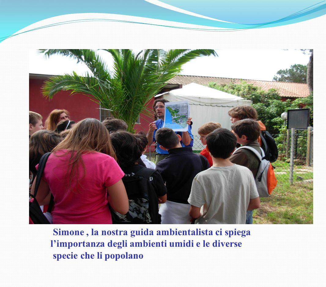 Simone, la nostra guida ambientalista ci spiega limportanza degli ambienti umidi e le diverse specie che li popolano