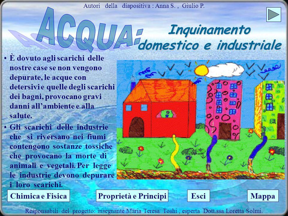 Inquinamento domestico e industriale Sul pianeta Terra il 97% di acqua è salata; il restante 3% è dolce, di cui solo un terzo disponibile. Acqua dolce