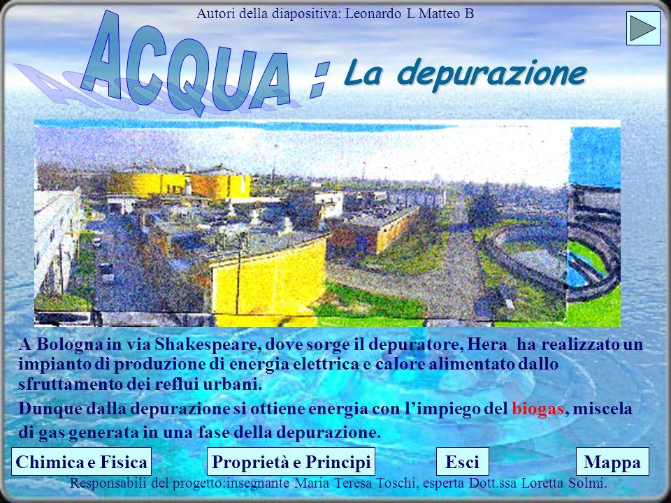 La depurazione 3.Lacqua viene raccolta in un decantatore (separazione di un solido da un liquido) per la sedimentazione dei fanghi. 4.Successivamente