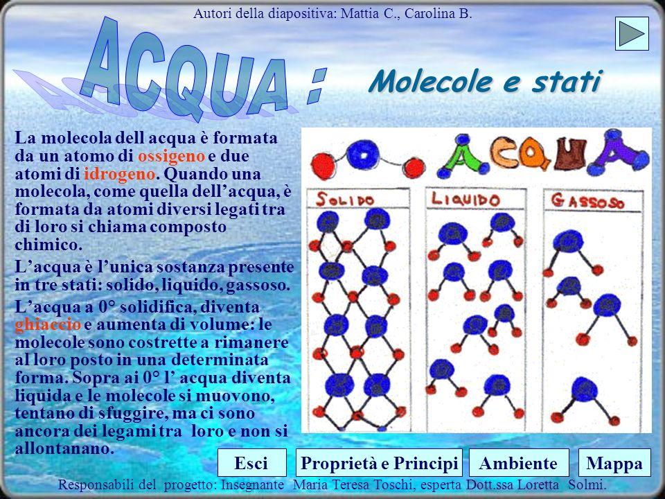 Molecole e stati La molecola dell acqua è formata da un atomo di ossigeno e due atomi di idrogeno.