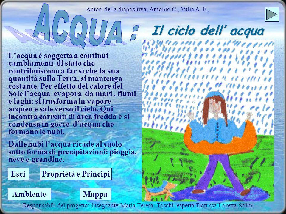 Il ciclo dell acqua Autori della diapositiva: Antonio C., Yulia A.