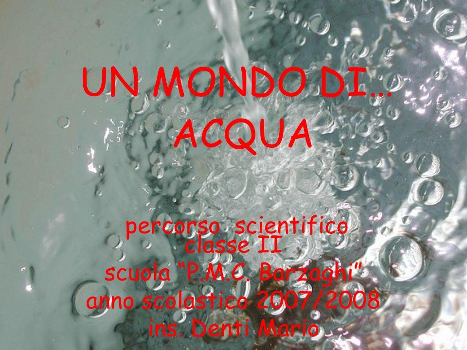 classe II scuola P.M.C. Barzaghi anno scolastico 2007/2008 ins. Denti Mario UN MONDO DI… ACQUA percorso scientifico