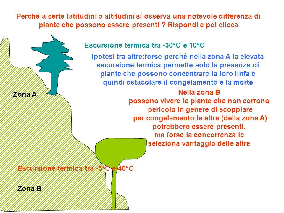 Perché a certe latitudini o altitudini si osserva una notevole differenza di piante che possono essere presenti ? Rispondi e poi clicca Escursione ter