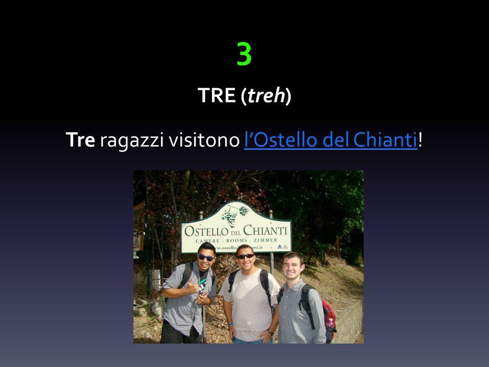 3 TRE (treh) Tre ragazzi visitono lOstello del Chianti!lOstello del Chianti