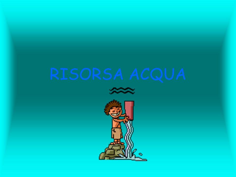 La presa di coscienza del valore della risorsa acqua come bene primario, fondamentale e limitato, e del suo corretto utilizzo da parte di tutti noi, è senzaltro un punto nodale in ambito di educazione ambientale.