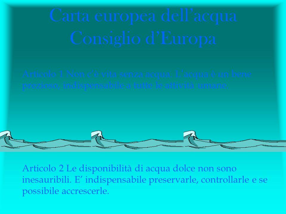 Carta europea dellacqua Consiglio dEuropa Articolo 1 Non cè vita senza acqua. Lacqua è un bene prezioso, indispensabile a tutte le attività umane. Art