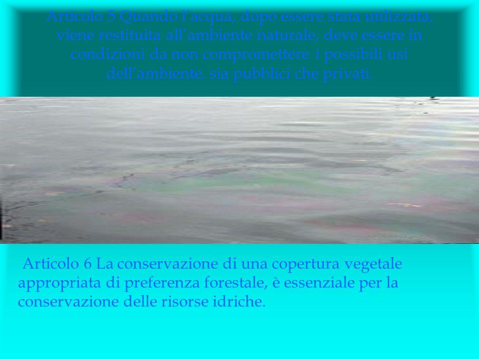 Articolo 7 Le risorse idriche devono essere accuratamente inventariate.