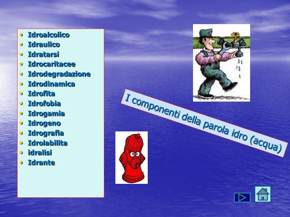 I componenti della parola idro (acqua) Idroalcolico Idroalcolico Idraulico Idraulico Idratarsi Idratarsi Idrocaritacee Idrocaritacee Idrodegradazione