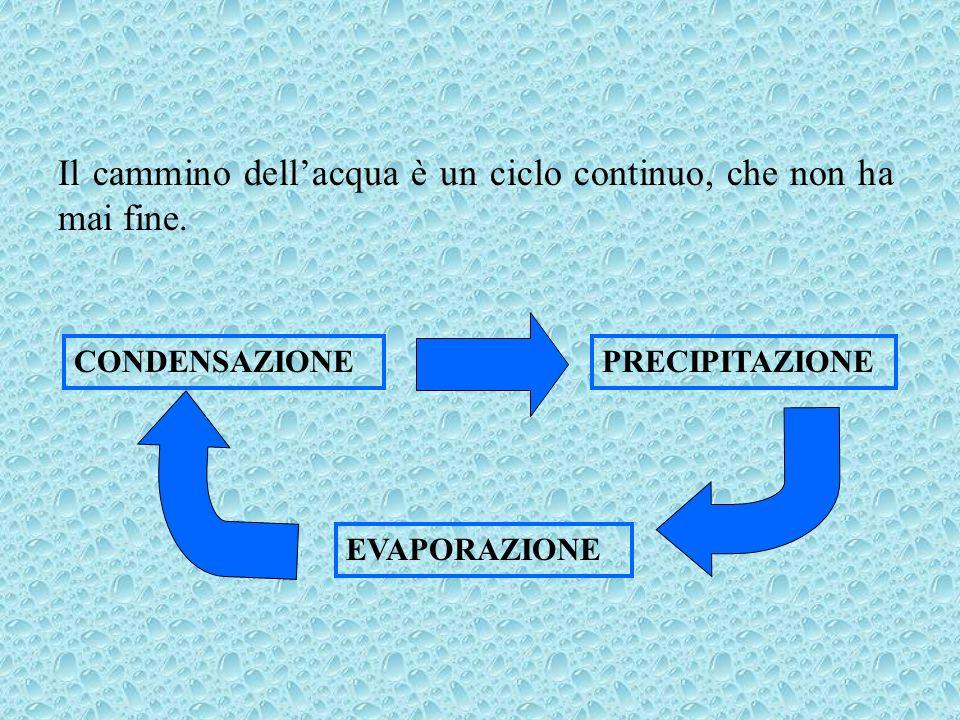 Il cammino dellacqua è un ciclo continuo, che non ha mai fine. EVAPORAZIONE CONDENSAZIONEPRECIPITAZIONE