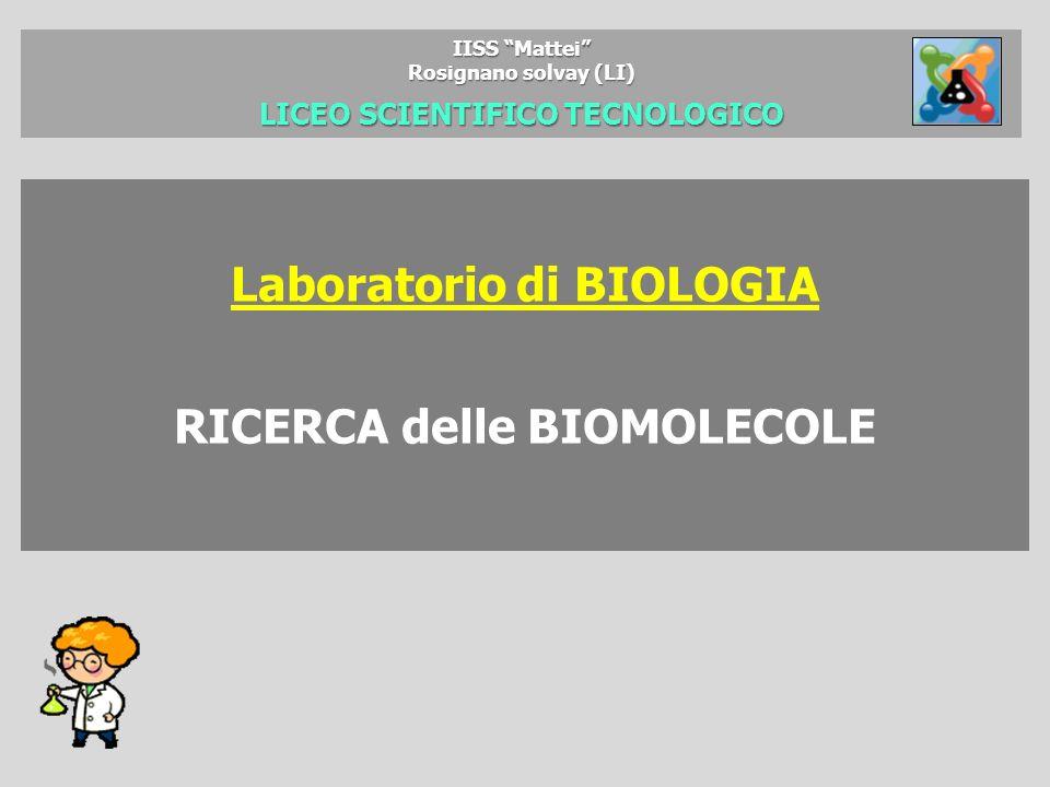 IISS Mattei Rosignano solvay (LI) LICEO SCIENTIFICO TECNOLOGICO Laboratorio di BIOLOGIA RICERCA delle BIOMOLECOLE