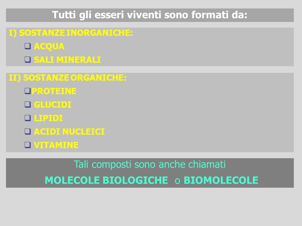 II) SOSTANZE ORGANICHE: PROTEINE GLUCIDI LIPIDI ACIDI NUCLEICI VITAMINE Tutti gli esseri viventi sono formati da: Tali composti sono anche chiamati MO